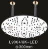 LED stainless steel head shower