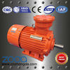 YB2, YBK2, YBF2, YB3 series explosion-proof asynchronous AC motors(H63-355mm)