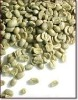 famouse green coffee