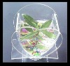 ISO desktop acrylic aquarium designer
