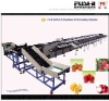 Fruit Grading Machine(FS-DZS)