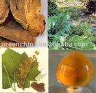Powder-Rheum officinale extract