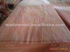 natural bintangor face veneer for plywood