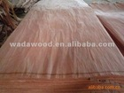 natural bintangor face veneer for plywood