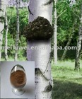 high quality Chaga extract powder.