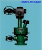 Thermal Recovery Wellhead