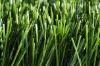 soccer&football artificial grass
