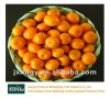 2012 sweet nanfeng mandarin orange