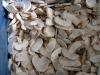 frozen bisporic mushroom