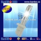 high brightness 4300k 6000k 8000k 10000k light bulb