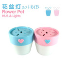 flower pot lights & 2.0 USB hub