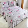 Tencel bed sheet set