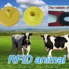 RFIT Animal ear tags for goats,swines and sheeps
