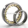 NSK Cylindrical Roller Bearing NN3015KTN1