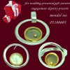 Charming 925 silver jewelry set inlaid crystal