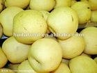 Fresh LaiYang Pear