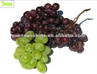 100% Natural Grape Seed Extract/ 95% OPC