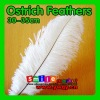 Factory Wholesale 100% Exporting 30-35cm with Various Colors Ostrich Feather for Party Wedding Centerpiece Decoration