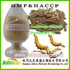 Cordyceps sinensis powder