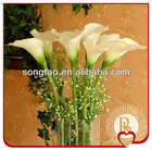 High imitation calla lily