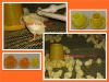 TAIYU Automatic/semi-auto system poultry farm