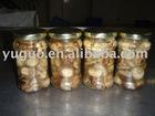 YUGUO 2010 BRC canned shiitake mushroom in brine