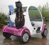 Electric Vehicle / Electric car
