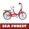 steel lead acied models E-bike