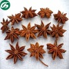 Star Anise Fruit Spice