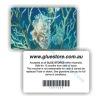 Glossy Plastic PVC Membership Card