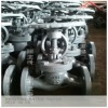 Russia standard cast steel globe valve PY25