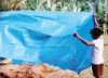 pe tarpaulin for agriculture
