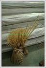 Bamboo Sticks for BBQ