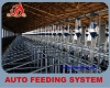 Easy to control pig house auto feeding system
