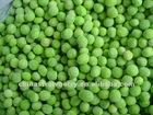 IQF green peas/frozen peas