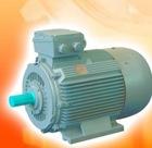Y2 electric motor