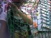 nylon /polyester /PE fishing net ,knotless netting