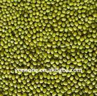 Beans 2011 Chinese Jilin Green Mung beans