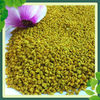 hot sale health products fresh bee pollen