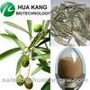 Olive Powder Oleuropein 10%-60%
