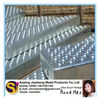 Punching Hole Mesh/Perforated Mesh/Perforated Metal Mesh/Galvanized/Perforated Mesh