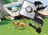 Smart Dog pet fencing system/wireless pet fence