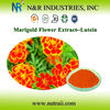 Marigold Flower Extract or Tagetes erecta P.E. Lutein manufacturer
