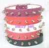 mix colour spiked one row croc pu leather dog collars stocked pet products