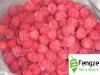 2010 New Crop Individual Quick Frozen Raspberry