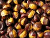 Chinese ringent chestnut for sale