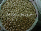 Guangxi Origin Frozen or Fresh GINGKO-NUT