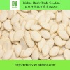 Wholesale Pumpkin Seeds