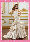 Beautiful Embroidered Charmeuse Wedding Dress