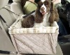 Pet car front carrier